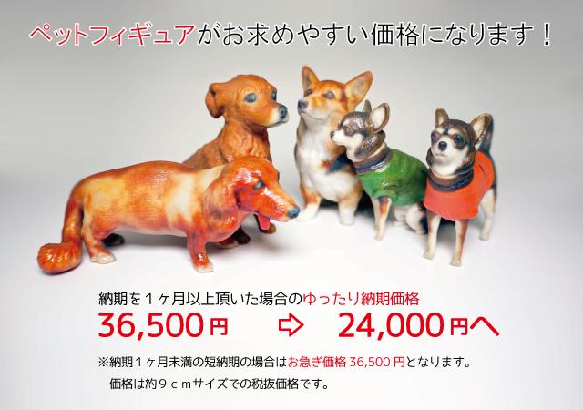ペット価格改定24000円